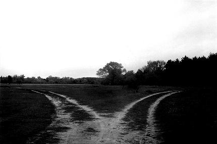 two_paths_b_w_